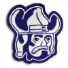 Viking Mascot 3
